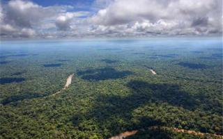 亚马逊森林未解之谜:当地流传着许多诡异传说
