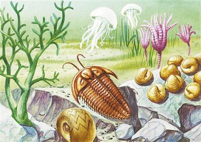 """2.5亿年前的二叠纪末 是谁""""谋杀""""了海洋中的八成生物-第2张图片-IT新视野"""