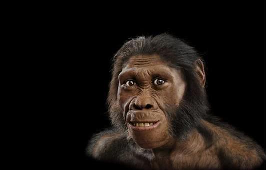 """人是由""""鱼""""进化来的?科学家:3.8亿年前爬上岸的鱼改变了一切-第1张图片-IT新视野"""