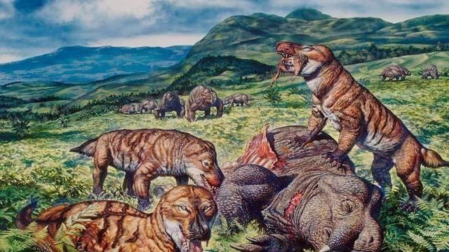 """人是由""""鱼""""进化来的?科学家:3.8亿年前爬上岸的鱼改变了一切-第3张图片-IT新视野"""