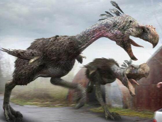 """恐龙灭绝后的统治者,地球最后的""""鸟皇帝""""——恐鹤-第1张图片-IT新视野"""