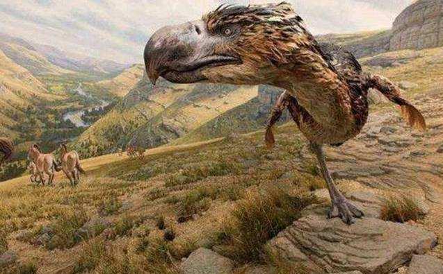 """恐龙灭绝后的统治者,地球最后的""""鸟皇帝""""——恐鹤-第2张图片-IT新视野"""