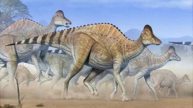 中科院科学家疑似发现恐龙DNA,却被引起质疑,争论焦点何在?-第2张图片-IT新视野