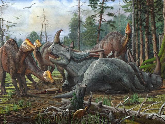 中科院科学家疑似发现恐龙DNA,却被引起质疑,争论焦点何在?-第3张图片-IT新视野