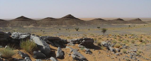 古生物学发现了可能是地球史前最危险的地方-第2张图片-IT新视野