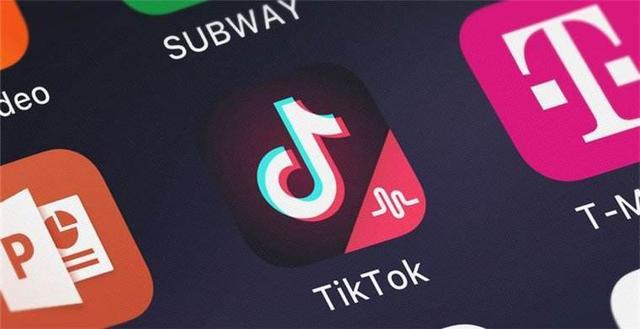 印度市场,字节跳动损失60亿美元,走出去的互联网企业要提前规划-第1张图片-IT新视野