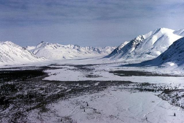 科学家称北极永久冻土融化可能会释放出致命的古代病毒-第1张图片-IT新视野