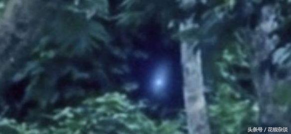 巴西亚马逊外星人事件,影片惊现奇异生物形似外星人-第1张图片-IT新视野