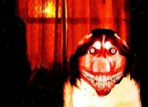 微笑狗为什么吓人,血淋淋的狗头让人毛骨悚然-第2张图片-IT新视野